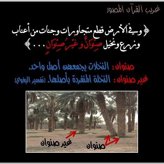 Pin By برادات وشاحنات استيراد On برادات وشاحنات Ex Quotes Quran Tafseer Fake Girls