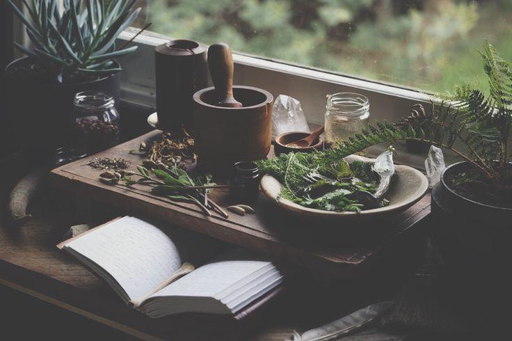 Home | studio life | Spiritwoods