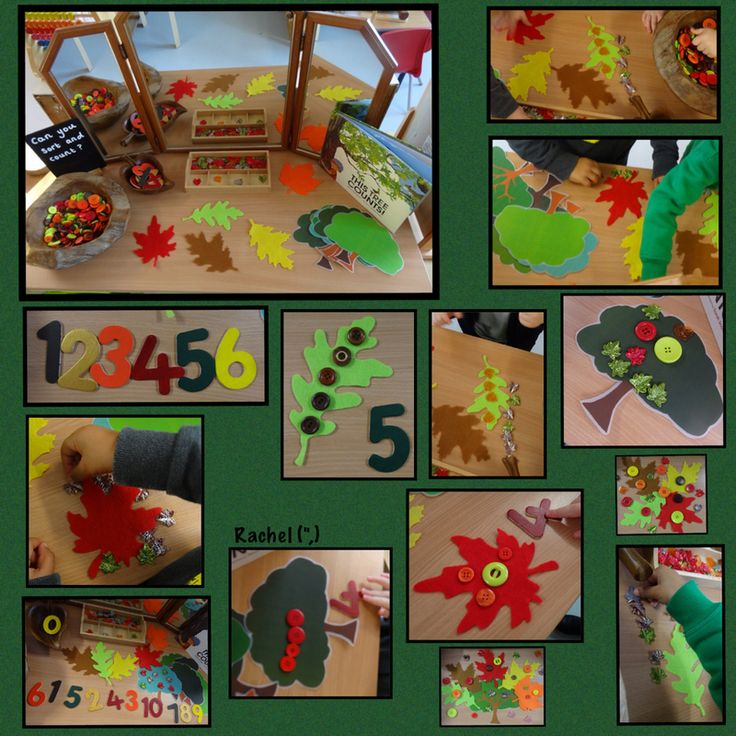 "Counting and sorting with an autumn feel... from Rachel ("",)"