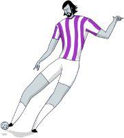 Liga BBVA   Liga de Fútbol Profesional