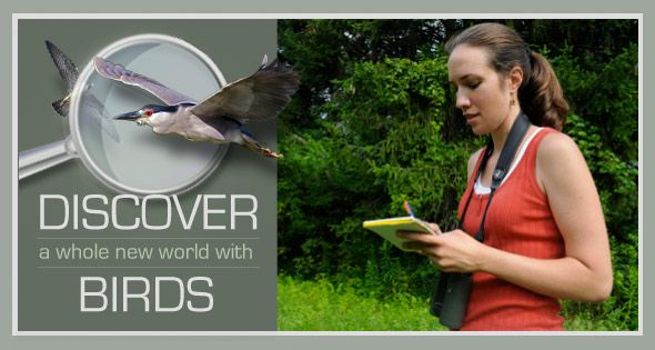 Citizen Science: Discover a whole new world with birds. Anyone can contribute to this body of bird sighting data. Fun!