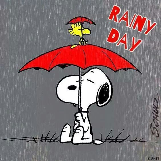 Clip Art Rainy Day Quotes: 4142 Best Crazy Peanuts Images On Pinterest