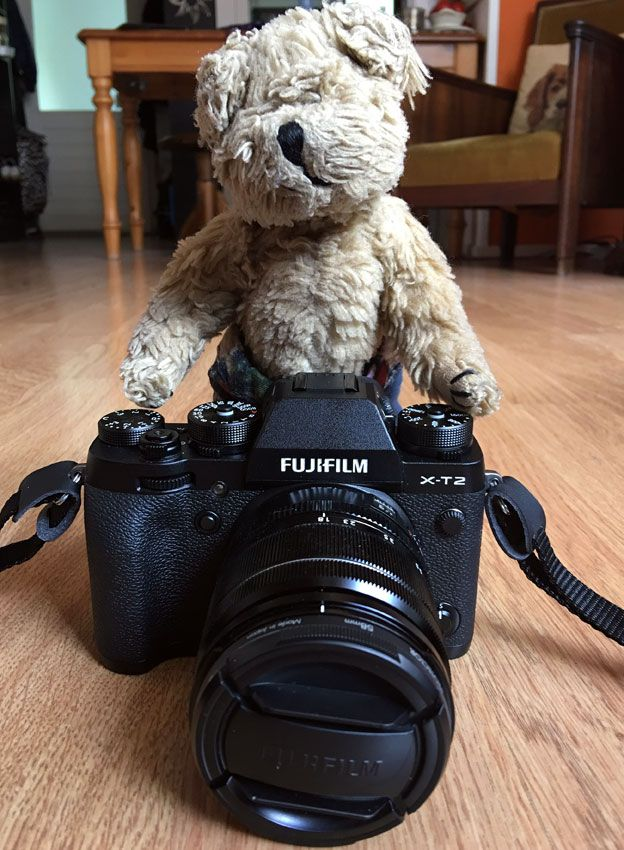 My travelling companion Alfie getting to grips with my brand new Fujifilm X-T2. The Fuji has received plenty of gold star reviews but - although that's important - ultimately it all comes down to whether it sits comfortably in your hands and is in tune with your photographic desires. In other words: Can I make it sing for me? I think I can!