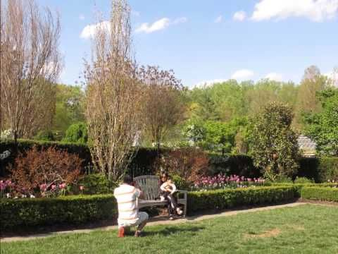 Brookside Gardens in May
