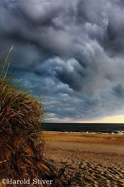 Outer Banks, North Carolina.  I AM GOING HERE this summer. PROMISE!!  And I did!!