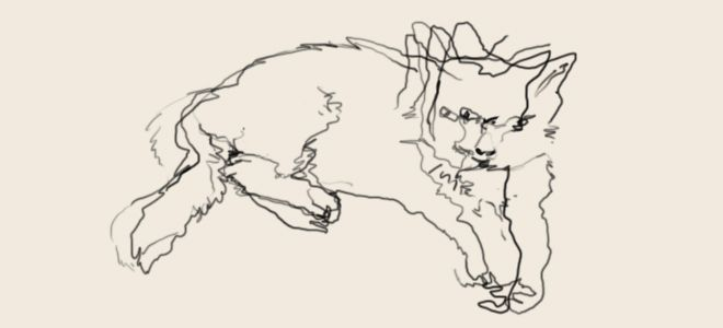 Blind Contour Line Drawing Tutorial : Best ian sklanrsky blind contour drawings images on