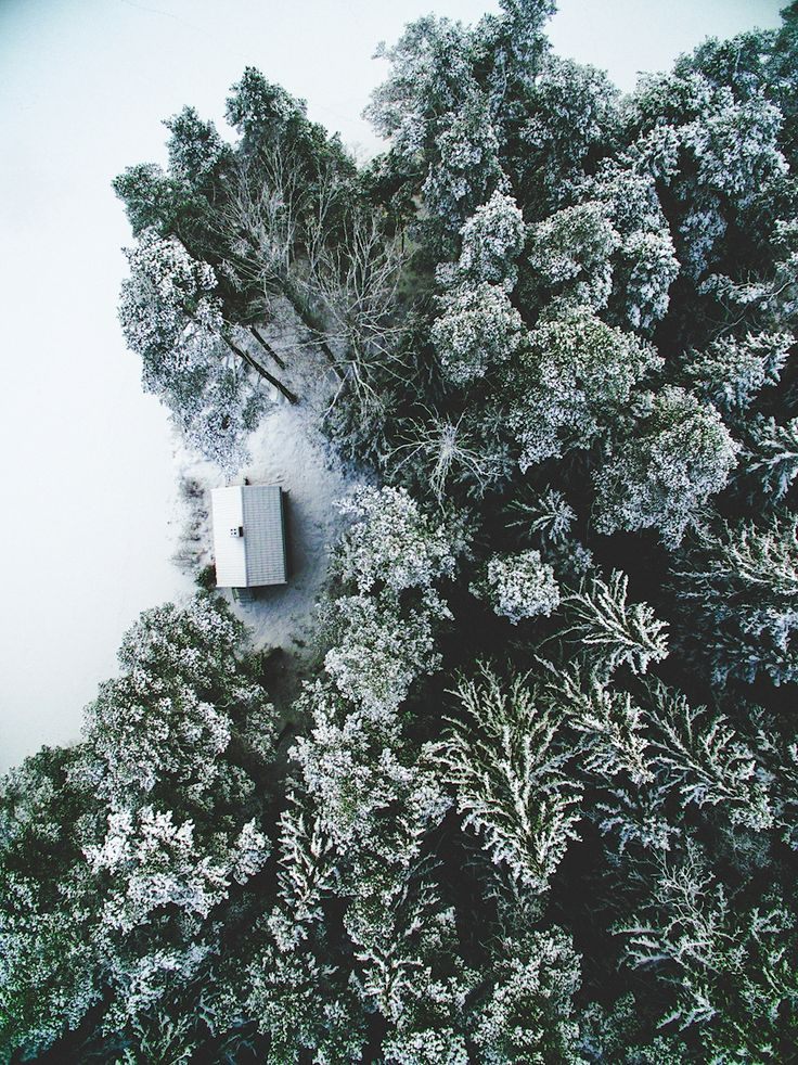 Tobias Hägg - Ensam. Drone photograpgh of a cabin in the woods. Available as poster and laminated picture at Printler, the marketplace for photo art.