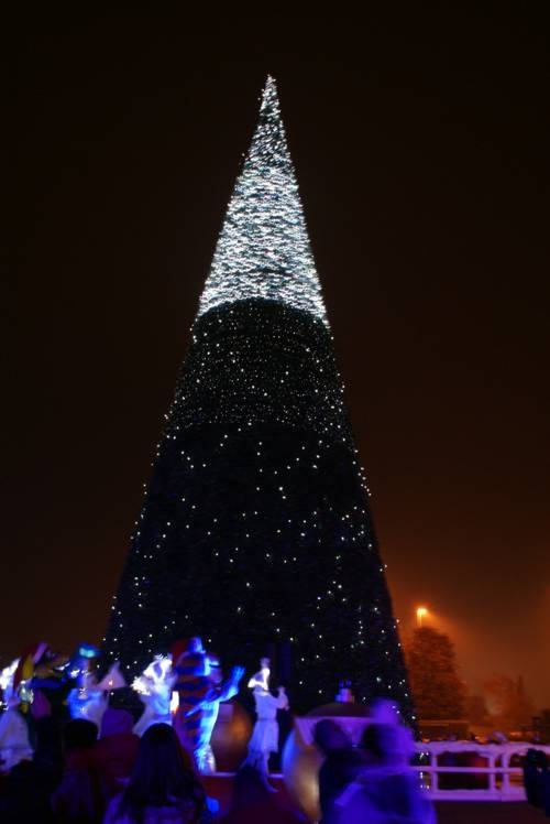 Albero di Natale 30M Gardaland by Creation Vetrina