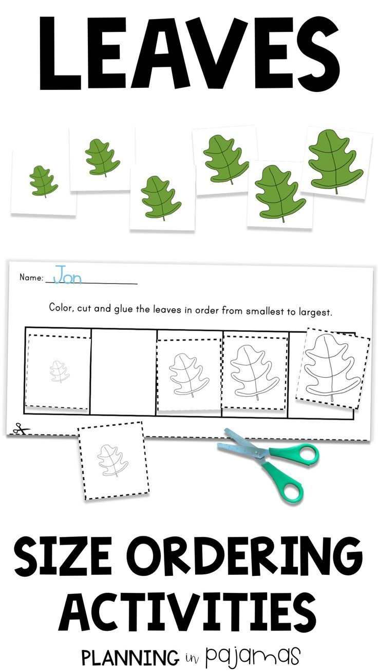 Size Ordering Leaves Differentiated Worksheets For Assessment And Size Ordering Cards For A Fall Math Center N Fall Math Centers Fall Math Fall Kindergarten [ 1308 x 736 Pixel ]