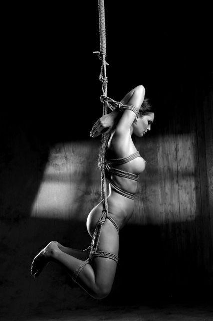 hikari rope bondage