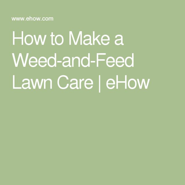 How to Make a Weed-and-Feed Lawn Care   eHow