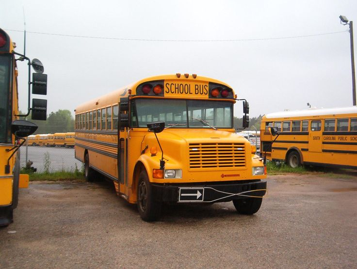 12 best SC Buses images on Pinterest   buses, South ...