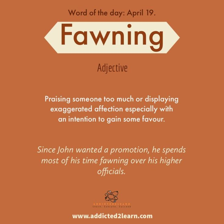 Vocabulary Builder: Fawning: Praising somebody an excessive amount of or displaying exaggerated…