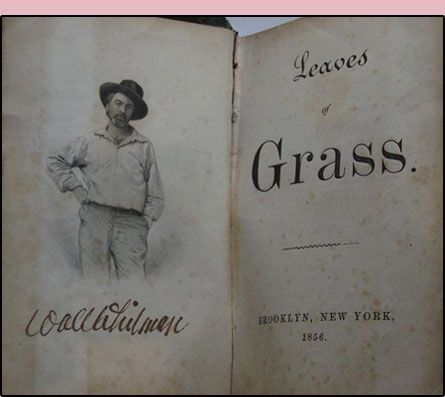 a look at walt whitmans transition in the publication of leaves of grass Transcript of walt whitman: song of myself: leaves of grass song of myself from leaves of grass walt whitman song of  i bequeath myself to the dirt to grow from the grass i love, if you want me again look for me under your boot soles you will hardly know who i am or what  background leaves of grass and what to expect historical context walt whitman strictly for your entertainment didn't drink welcomed all religions anti-slavery questionable sexuality had transcendentalist beliefs.