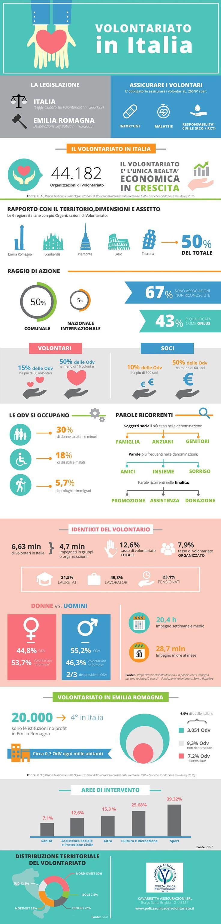infografica cavarretta volontariato italia 2016