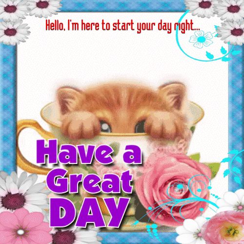 I'm here to start your day right..Have a great day cute cat animated hugs hello friend comment good morning good day greeting beautiful day