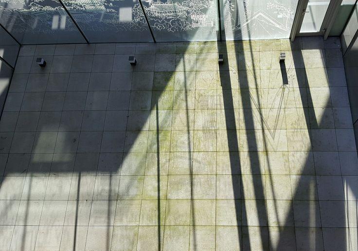 #그림자벽화 밋밋한 바닥이 시간이 지남에 따라 그림자벽화로 채워진다