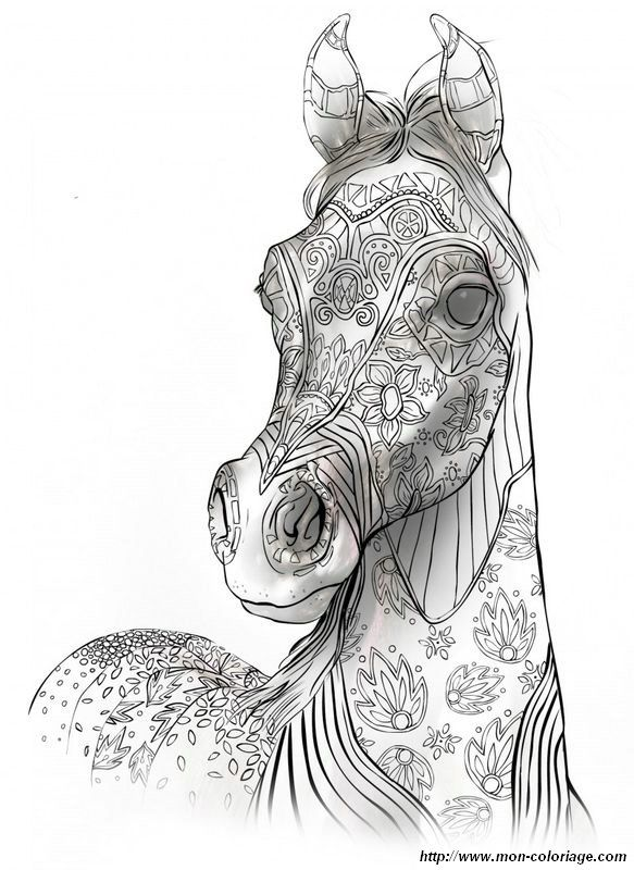 Pur Sang Arabe Coloriage Cheval Coloriage Mandala Animaux Tete