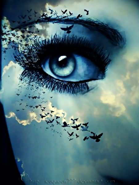 That eye the sky essay
