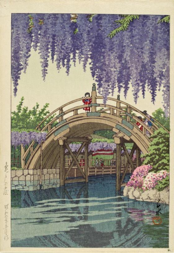 Wisteria at Kameido Kawase Hasui (Japan, 1883-1957) Japan, 1933 Prints; woodcuts Color woodblock print Image: 11 3/8 x 7 3/4 in. (28.89 x 19.69 cm); Sheet: 12 3/8 x 8 5/8 in. (31.43 x 21.91 cm) Gift of Chuck Bowdlear, Ph.D., and John Borozan, M.A. (M.2003.67.45) Japanese Art