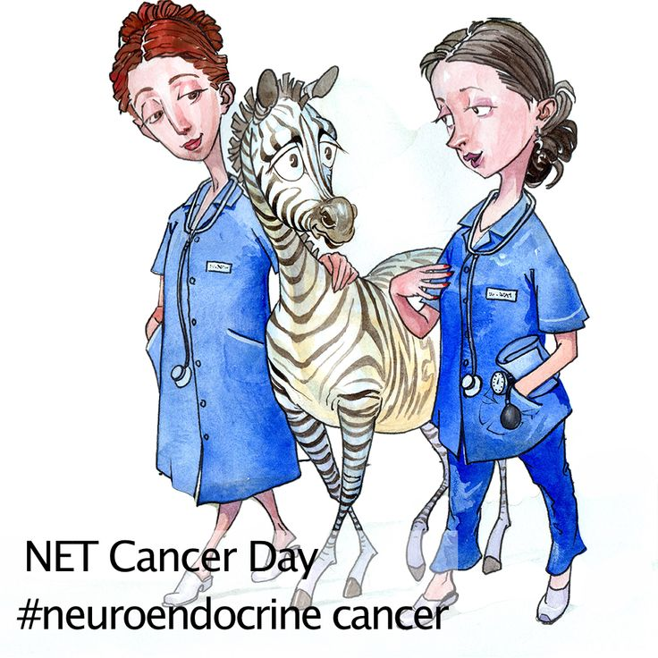 Oncology Nurses. An Oncology Nurse is a professional cancer nurse who has experience working with people with cancer and understands how challenging the journey can be. The oncology nurse helps remove roadblocks to treatment, so that patients are able to keep their appointments, follow their treatment regimen, and receive the support services they need. http://www.cancer.net/blog/2014-05/spotlight-oncology-nurses-–-part-i-qa