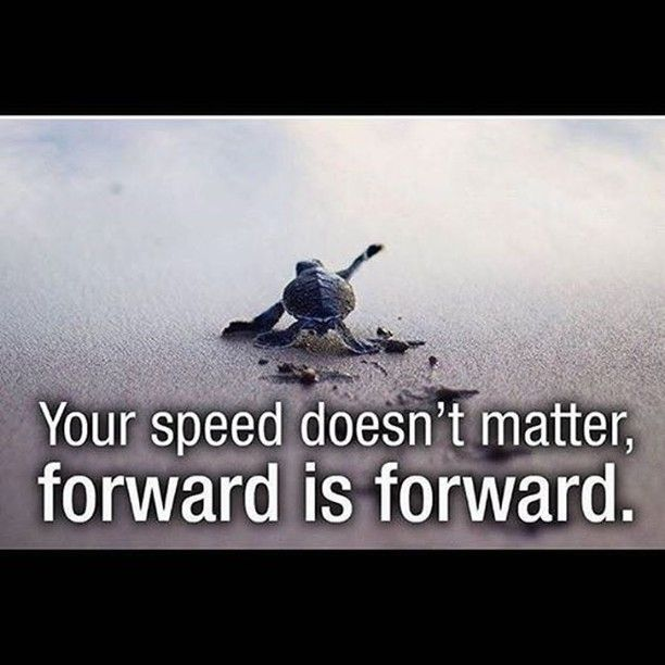 Image result for All caught up and moving forward