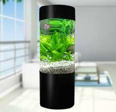Image result for fish aquariums