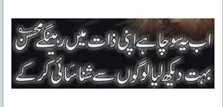 """Mohsin Naqwi Poetry  """" Ab Ye Socha Hai Apni Zaat Mai Rahe Gey Mohsin   Buhat Dekh Liya Logo Se Shanasai Ker Ky"""""""