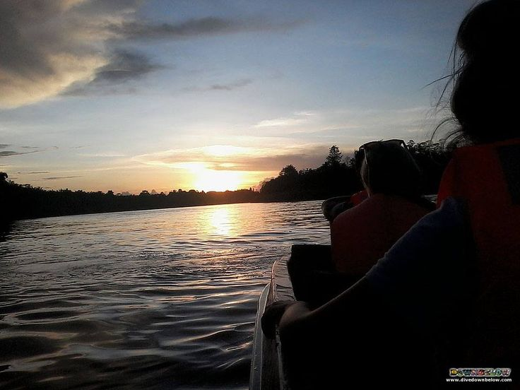 It's almost spiritual as the Borneo sun sets on the horizon whilst the adventurers' enjoy the sounds and sights of swiftlets on the Kinabatangan river cruise :)