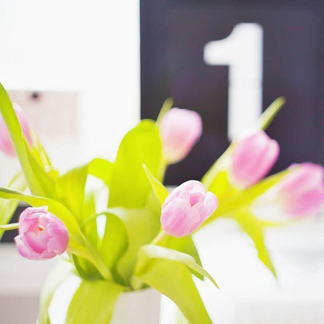 Witam Panią Pani Wiosno! Dobrze że Pani już jest bo się stęskniłam!  Pora na trencz i trampki. I dużo lodów na podwieczorek. I na spacery wśród kwitnących magnolii. I na truskawki jedzone kilogramami. I na grill jest pora. Na życie w pełni. . . . #tulips #workinprogress #flowers #homeoffice #spring