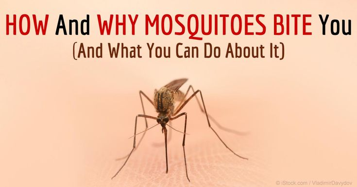 Female mosquitoes feed on human blood because they need the protein and other components to produce their eggs. http://articles.mercola.com/sites/articles/archive/2015/08/08/why-mosquitoes-bite.aspx