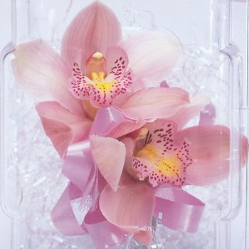 Double Pastel Orchid Corsage - beautiful!