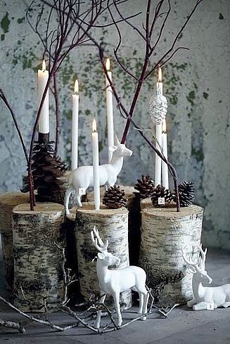 Use slices of birch trunk to give height to displays and add to the wintery feel