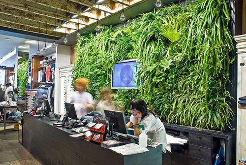 Internal green wall, Paris