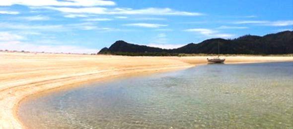 yeni zelanda plaj