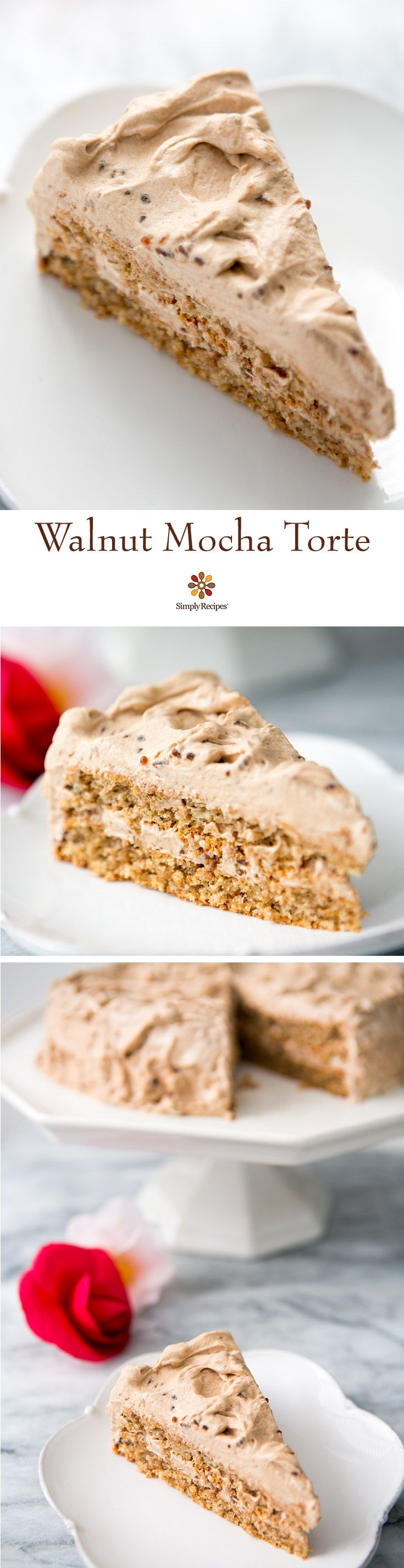 Walnut Mocha Torte ~ German-style torte made with ground walnuts, whipped eggs, and bread crumbs, and a mocha whipped cream frosting. ~ SimplyRecipes.com