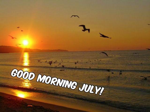 Good Morning #July, good morning #summer!  ☀