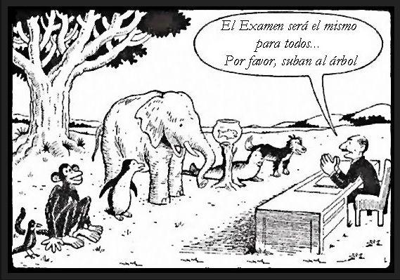 La verdadera relevancia de las calificaciones escolares: ¿qué tanto importan?