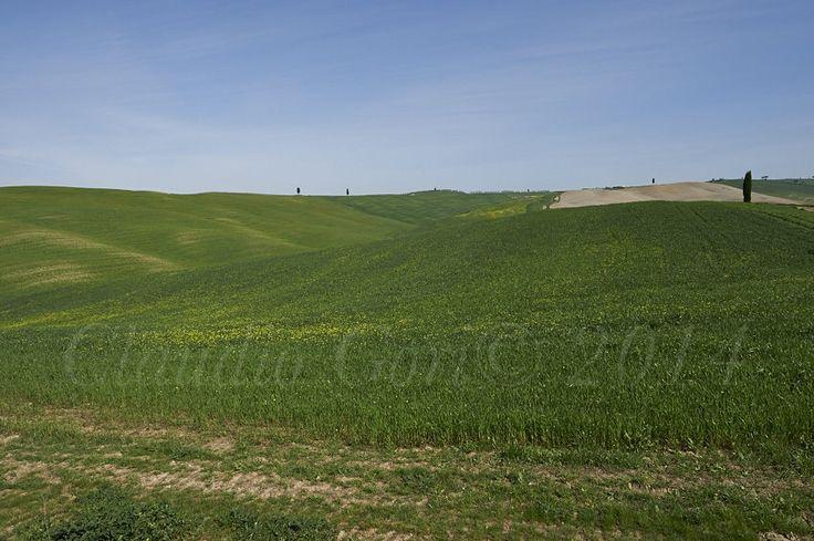 Le Crete nei pressi di Torrenieri.