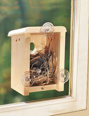 Окно Гнездо коробка