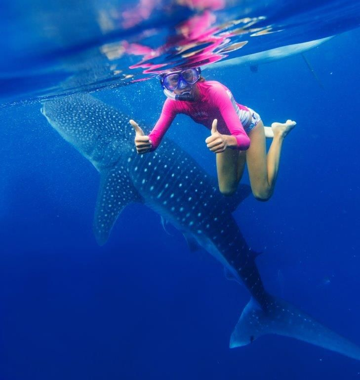Scuba diving and snorkelling with whales in South Africa http://bit.ly/293Li6V #dirtyboots #scubadiving #snorkelling #whaletrips #southafrica #meetsouthafrica #thingstodo
