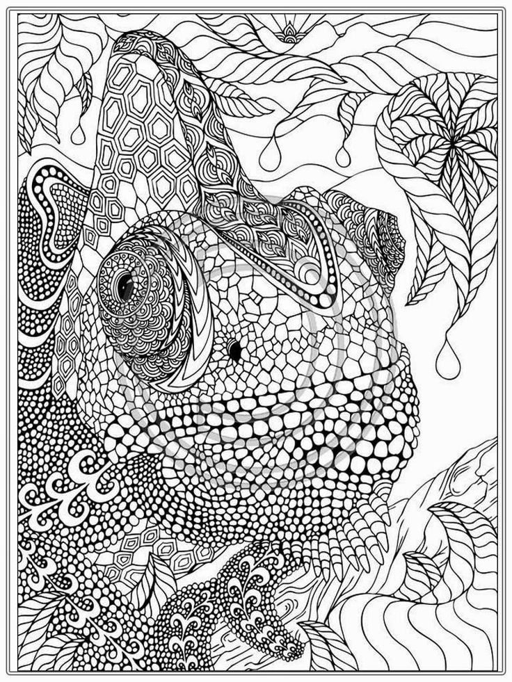 Printable Iguana Adult Coloring Pages