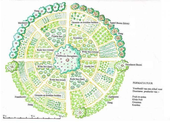 Les arbres et les forêts en permaculture