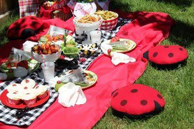 Ladybug Padrty ~ ladybug picnic