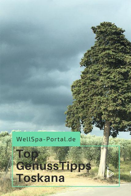 Die besten Genussreisetipps der Toskana. Von Florenz nach Pisa, San Gimignao bis in die Weinberge. Vom besten Eis über Olivenöl, Auszeit und puren Genuss auf einer Toskana Reise. Sanfte grüne Hügel, traumhafte Sonnenuntergänge und entspannte Unterkünfte. Die Toskana in Italien, das bedeutet Wellness, Camping, Sterne Hotel und ganz viel Ruhe und Entspannung. Slow Travel oder auch Genussreisetipps, ganz nach Wunsch.