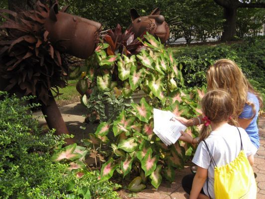 Pick up a backpack and solve an Art Caper mystery while exploring the outdoor sculpture collection at the Emily Lowe Gallery at the Hofstra University Museum (112 Hofstra University, Hempstead; 516-463-5672) until 3 p.m. daily during the Lowe Gallery's open hours (Tues-Fri: 10 a.m.-5 p.m.; Sat-Sun: 1 p.m.-5 p.m.; Mon: closed). Children can explore the outdoor sculpture collection and take on solving an Art Caper mystery by looking for clues among the artwork. Price: Free. For more…