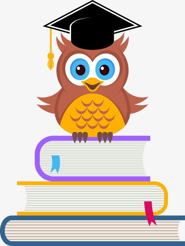 Vector Owl On The Books Owl Clipart Owl Cartoon Owl Png And