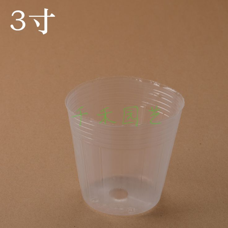 Orchid seedling raising nursery bag 3-inch transparent cup