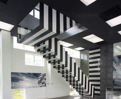 zebra indoor