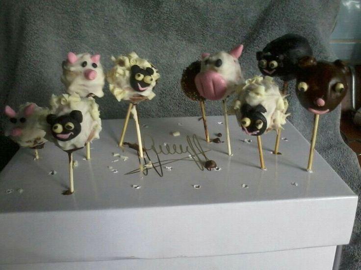 Dier cake pops